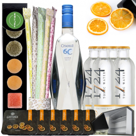 Kit Vodka Tonic Citadelle