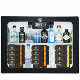 Miniatures Kit Gin