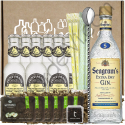 Set Gin Tonic Seagram's
